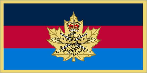 CIC Branch Flag